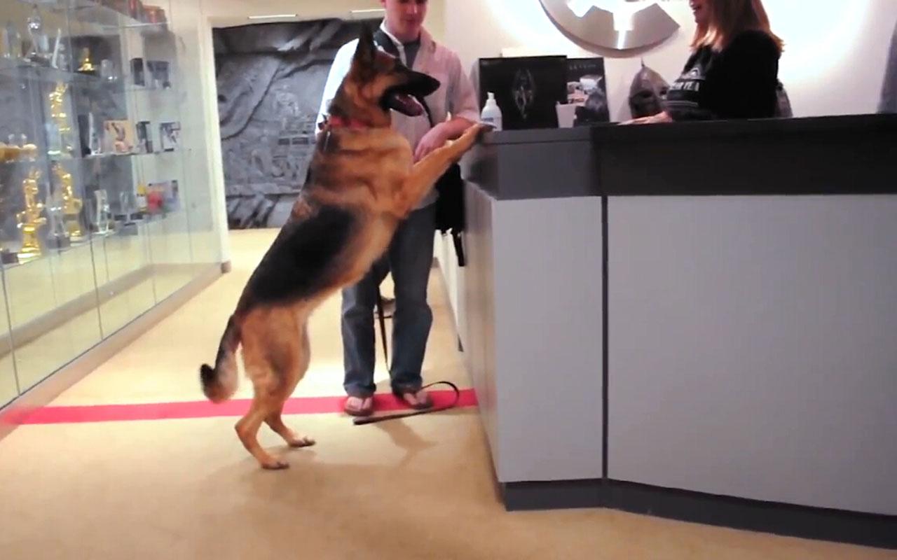 《輻射4》「狗兒」的搞笑幕后開發故事