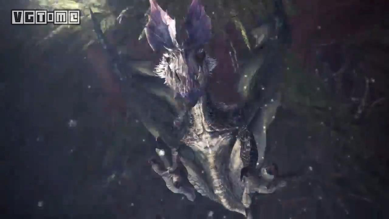 Another old friend! The Black Wolf Bird is also on the Ice Sheet of Monster Hunter World.