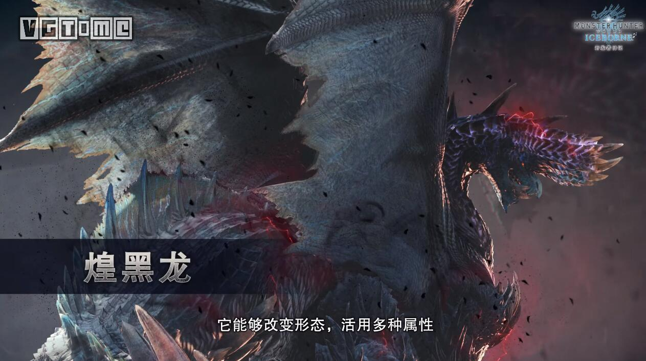 Monster Hunter world: ice age the fourth free Monster: Huang Heilong