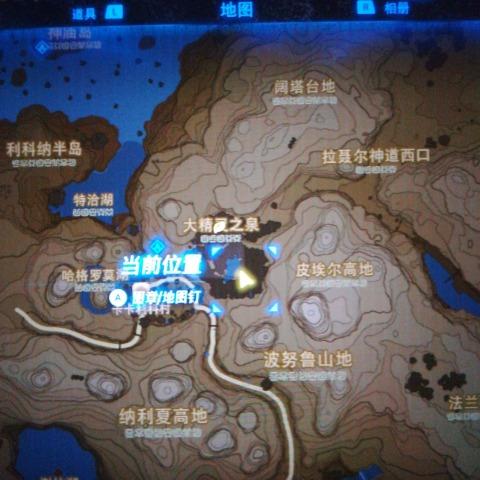 大山雀04的发布-俱乐部-通辽七彩神仙观赏鱼图片