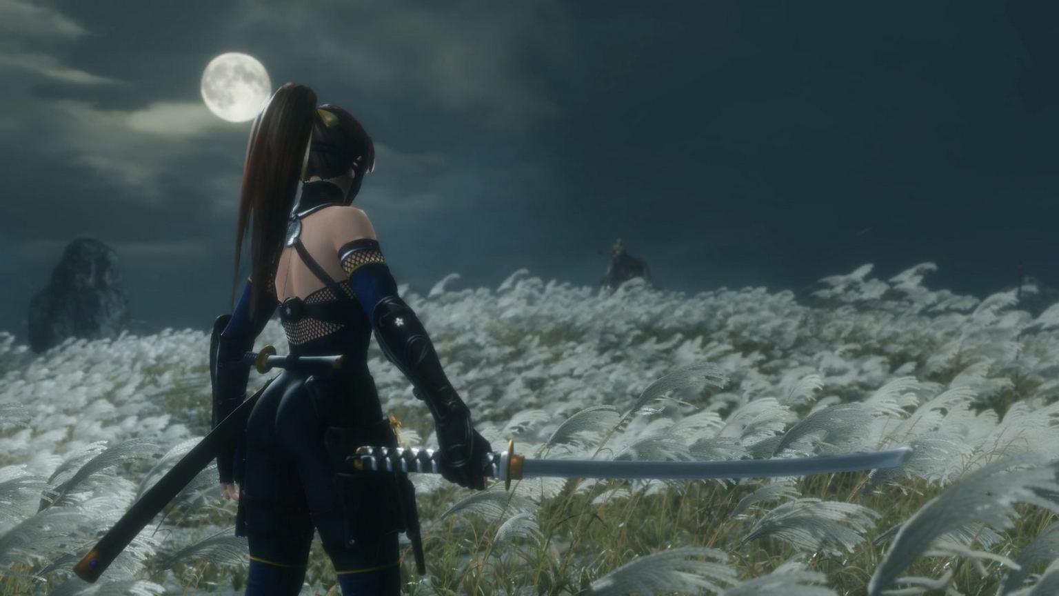 通过MOD,在《只狼 影逝二度》玩家可以化身性感女忍